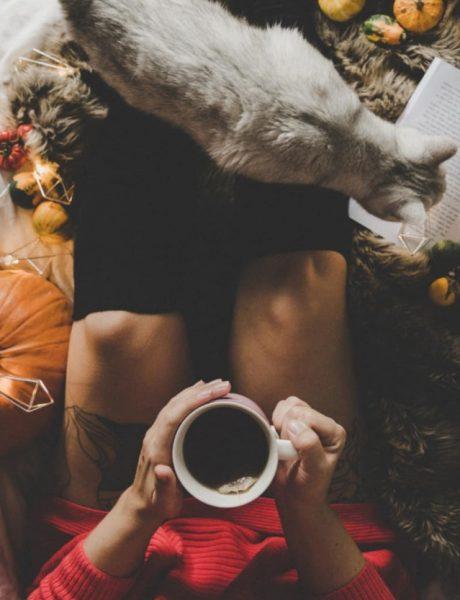 Instagram priča: Šta je kul u oktobru?