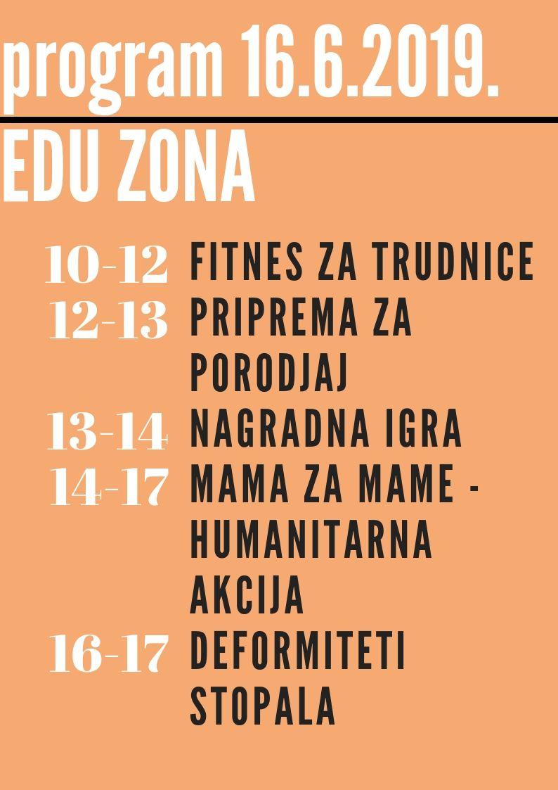 program 16.06.2019. edu zona Prvi Bejbi fest: Za radoznale i preduzimljive mame