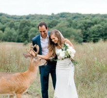 Prelepe slike sa venčanja sa jednim rogatim nezvanim gostom