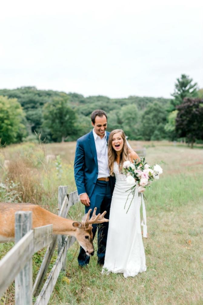 slika1 1 Prelepe slike sa venčanja sa jednim rogatim nezvanim gostom