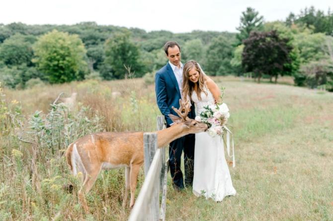 slika2 1 Prelepe slike sa venčanja sa jednim rogatim nezvanim gostom