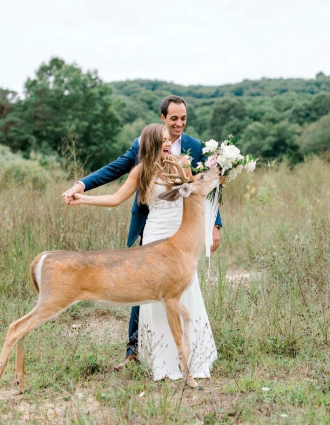 slika3 1 Prelepe slike sa venčanja sa jednim rogatim nezvanim gostom