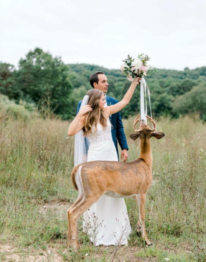 slika6 1 Prelepe slike sa venčanja sa jednim rogatim nezvanim gostom