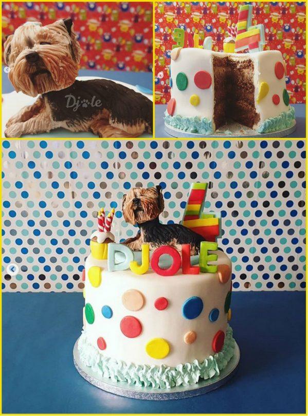 Slika2 e1575627517279 Đoletove avanture: Kako sam proslavio 4. rođendanak!