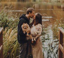 Zlatna pravila za harmoničan zajednički život