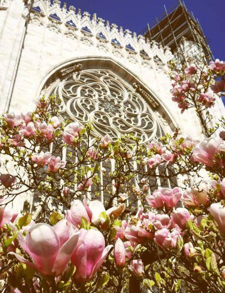 5 najlepših katedrala na svetu