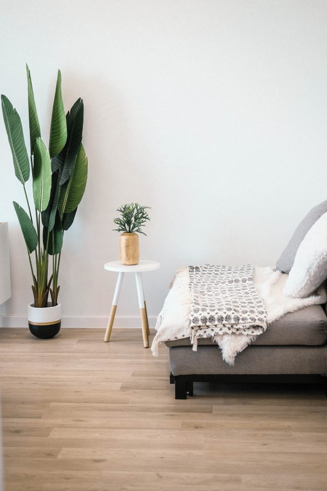 biljke e1591967822138 5 lakih i stylish načina da unaprediš izgled svoje dnevne sobe