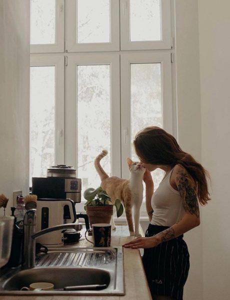 Radost života sa kućnim ljubimcima