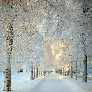 Mrzim sneg i rado ga se ne sećam