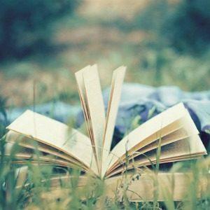 Anketa: Savršena knjiga za mesec jun