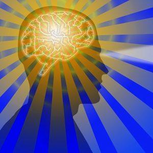 Hrana za mentalnu energiju i koncentraciju