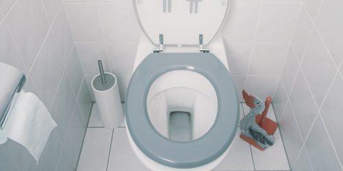 Živi zdravo: Priča o gaziranim pićima i WC šolji