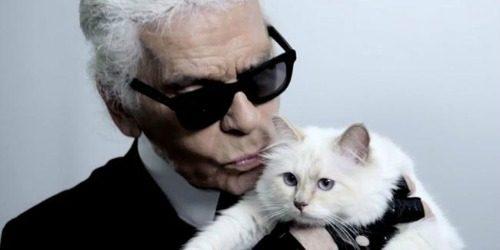 """Modni zalogaj: Karl Lagerfeld predstavio """"Choupette"""" kolekciju"""