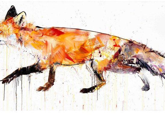 Dejv Vajt: Umetnička dela inspirisana divljinom