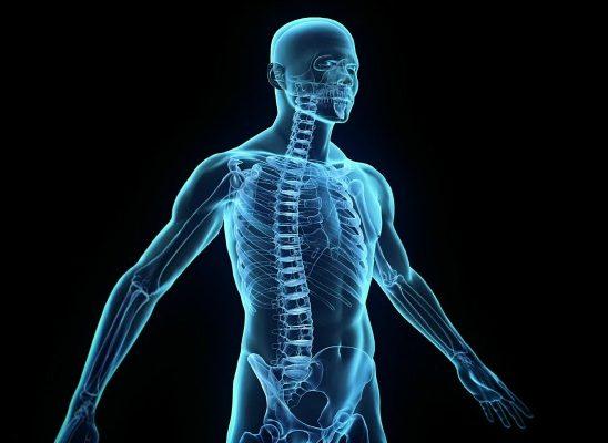 10 neverovatnih činjenica o ljudskom telu