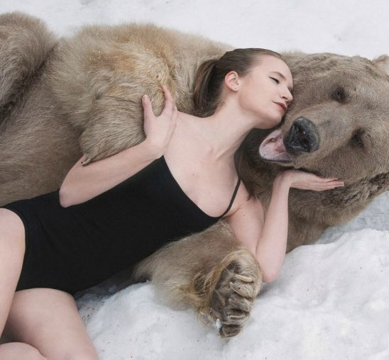U zagrljaju medveda zbog kampanje