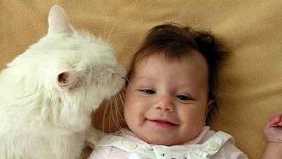 Trudnoća je dar: Da li treba imati kućne ljubimce uz bebu?
