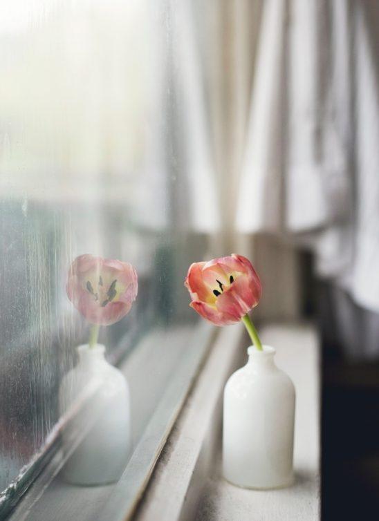 Zašto je zahvalnost zapravo zdrava (za srce i mozak)