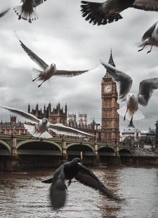 Jesen u Londonu: 7 MUST DO stavki za jedinstveno iskustvo