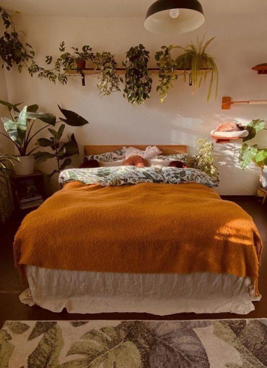 Ideje za dekoraciju doma biljkama