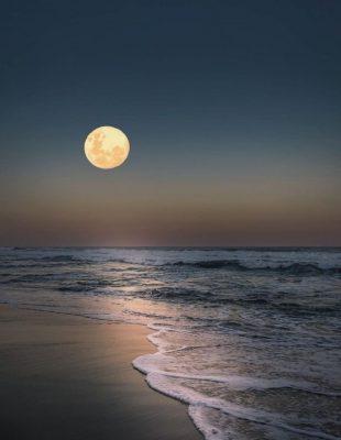Poznate ličnosti su opsednute mesečevom vodom – a mi vam otkrivamo šta je ona i čemu zapravo služi